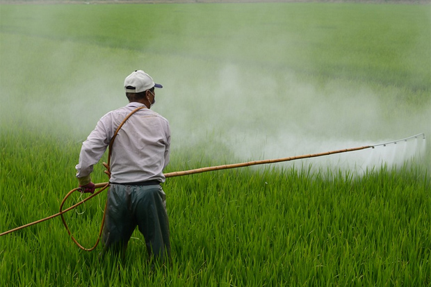 Pesticides and Fertilizers Used in Farming Pollute Waterways and Cause Breathing Problems in Farmer's Children