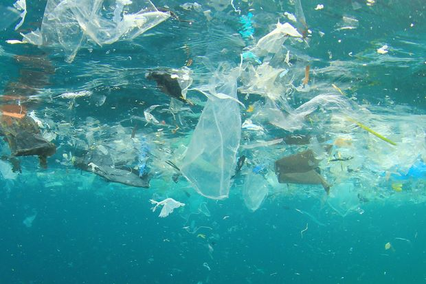 The Status of Plastic Waste in the United States