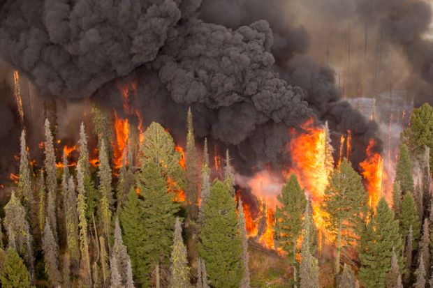 wildfires spike levels of air pollution in northwest u s
